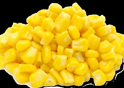 Sweet-Corn-PNG-Transparent-Image-1024x500